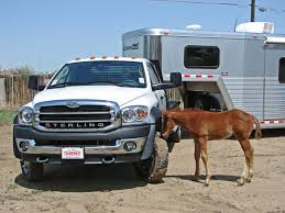 Sterling Bullet Towing Cimarron Horse Trailer - welcome to mrtrailer.com
