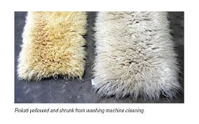 tastic dealing with troublesome rugs cleanfax