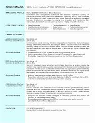 It Manager Sample Resume It Manager Resume Sample Unique It Manager Sample Resume Mind 15