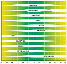 Ph And Organic Substrate Nutrients   Organicsoiltechnology