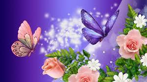 flowers, Flower wallpaper ...