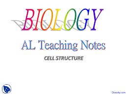 cell membrane essay question < college paper academic writing cell membrane essay question 1983