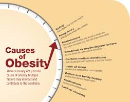 top obesity causes and effectstips tricks and news for health  obesity causes