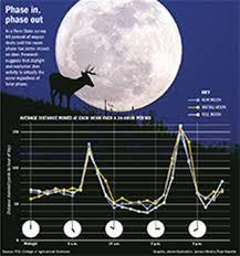 71 Unbiased Deer Hunting Moon Chart