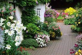 Small Picture Designing a Cottage Garden
