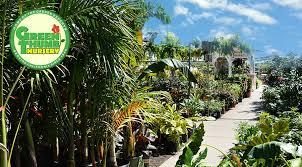 Planting + Planters - <b>Green</b> Thumb Nursery