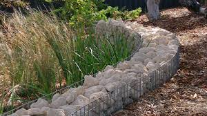 Small Picture Gardening Australia Fact Sheet Front Garden Progress