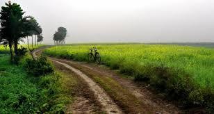 Image result for पगडंडी