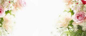 Wedding Rose Background 5 Background Download