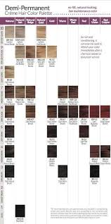Guy Tang Permanent Color Chart 28 Albums Of Ion Demi Permanent Hair Color Swatches