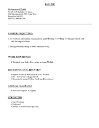Type A Resume Format Resume Format Types Resume Format Resume Template
