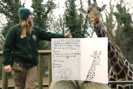 Josie hits double digits! – Dudley Zoo and Castle