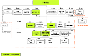 British Airways Organisational Chart Item 4 Information On Fibria