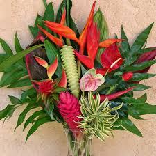 hawaiian holiday special