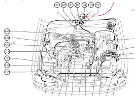 similiar toyota tacoma schematics keywords ta a electrical wiring diagram on wiring diagram 2003 toyota tacoma