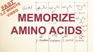 Mcat Amino Acid Chart Easy Memorize The Twenty Amino Acids Structure And Code Tryptophan Correction
