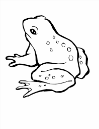 Small Picture To Color And Print Coloring Pages Coqui Frog Page Free Printable