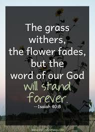 Gods Word Quotes