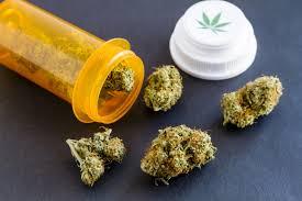 Як впливає марихуана, чи викликає трава залежність та чому канабіс варто  легалізувати в Україні | Українська правда _Життя