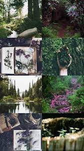 Aesthetic Wallpapers — Nature Aesthetic 🌱