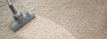 Image result for professional carpet cleanersâ