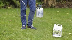 Image For Lawns Best Moss Killer For Lawns My 3 Top Picks Buyers Guide