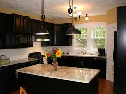 What Color Should I Paint My Kitchen With Black Cabinets