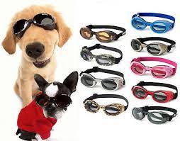Doggles Ils Dog Goggles Sunglasses Assorted Colors Uv Eye