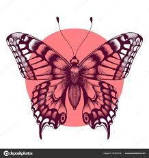 Motýl V Růžové Kolečko Krásné Tetování Motýla Symbol Nesmrtelné