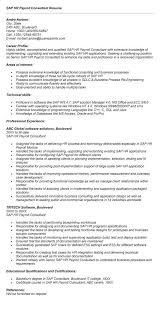 Sap Hr Resume Sample Stunning Sap Hr Payroll Consultant Resume Sample Resumecompanioncom