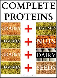 Protein In Seeds Chart Complete Proteins Ritesh Bawri