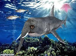 funny shark detector