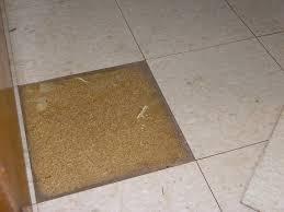 photos of vct tile floor
