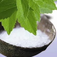 Image result for stevia maltodextrin hazard