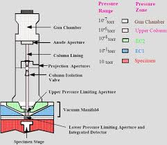 Environmental Scanning Electron Microscopy Department Of Physics