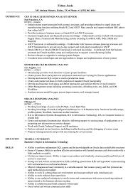 Business Analyst Sample Resumes Oracle Business Analyst Resume Samples Velvet Jobs 13