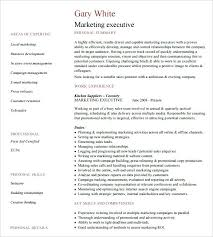 Resume Templates For Executives Beauteous Business Executives Resume Executive Resume Templates Free Free
