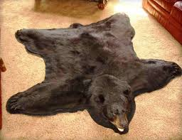 exotic bear skin rug today real bear skin rug uk