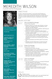 Professional Marketing Resume Sales And Manager Samples Suitable ...