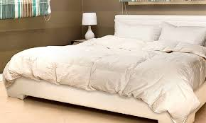 Goose Feather and Down Quilt   Groupon Goods & BDirect: Royal Comfort Goose Feather + Down Quilt - Single ($65), ... Adamdwight.com