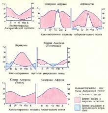 География Пустыни Африки Реферат Учил Нет  Климатограммы пустынь различных типов
