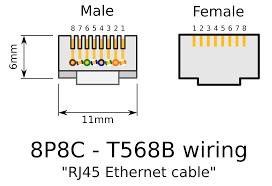 clipart rj45 connectors Male Plug Diagram Male Plug Diagram #30 110 male plug wiring diagram