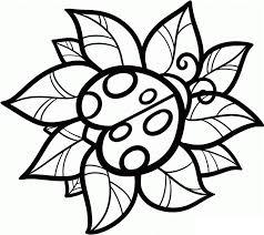 Small Picture Anime Coloring Pages Anime Ladybug Coloring Page Sheets Cute