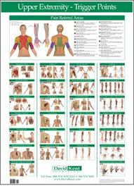 Free Printable Acupressure Points Chart W41172ue Trigger