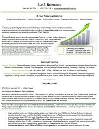 combination resume samples resume sample combination style 3 by combination resume format resume cover letter template sample hybrid resume format samples hybrid style resume examples