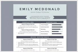 best ms word resume template best microsoft word resume templates nardellidesign com shalomhouse us