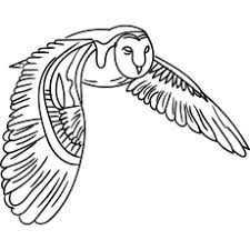 Discover all our printable coloring pages for adults, to print or download for free ! Top 25 Free Printable Owl Coloring Pages Online
