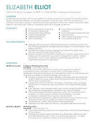 Awesome Marketing Resume Summary Gallery Entry Level Resume