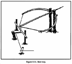 rogue turtle booby traps avoid the traps of others a bow trap is one of the deadliest traps it is dangerous to man as well as animals to construct this trap build a bow and anchor it to the ground