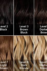 Chestnut Hair Colour Chart A Hair Color Chart To Get Glamorous Results At Home